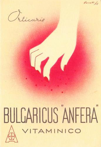 Bulgaricus-Anfera