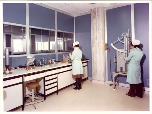 laboratorio via pinocchio 1983-(2)